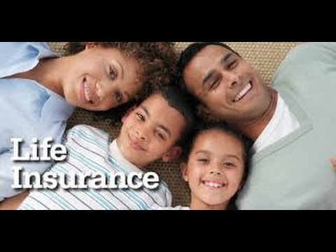 Life Insurance Over 50 Quotes Beauteous Cheap Life Insurance For Seniors Over 50 To 80 Quotes  Youtube