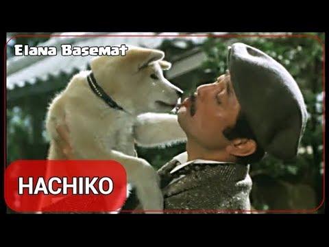 "HACHIKO Monogatari 1987 Film [4/11] ""Japanese Version ..."