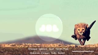 Enrique Iglesias feat Sean Paul - Bailando ( Gregor Salto Remix )