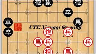 2004 aleague E36 靳玉硯 Jin Yuyan D 謝靖 Xie Jing