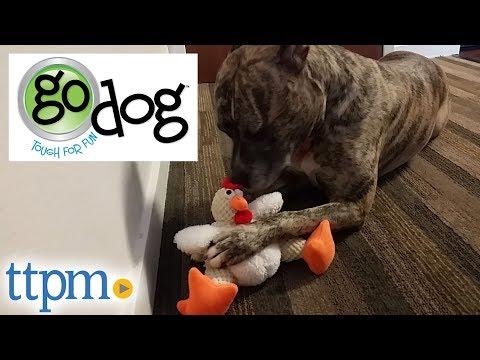 godog-chew-guard-dog-toys-from-worldwise