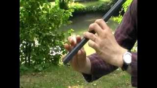 Oggy et les Cafards joué à la Flûte Chromasix (Jean-Pierre Poulin)