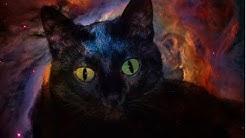Mythologie der Katze   Katzen im alten Ägypten