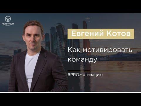 Как мотивировать команду (советы для руководителей). Евгений Котов