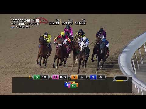Woodbine, Tbred, November 26, 2017 Race 9