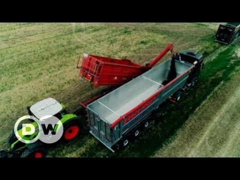Agribusiness is gaining ground – literally | DW English