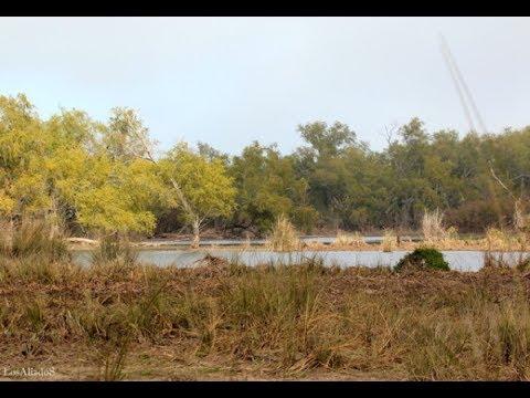 Resultado de imagen para humedales rio parana