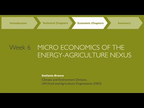 MOOC Week6 Energy and Agriculture on the Micro Level