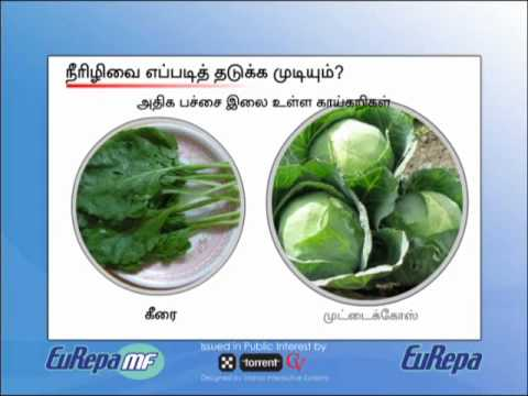 sugar patient diet food chart in tamil: Intro diabetes tamil youtube