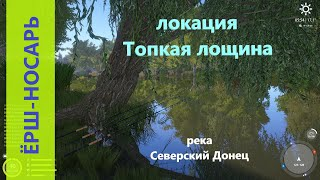 Русская рыбалка 4 река Северский Донец Ёрш носарь под деревом