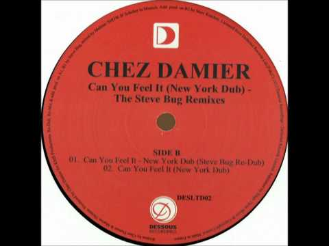 Chez Damier - Can You Feel It? (Steve Bug Remix)