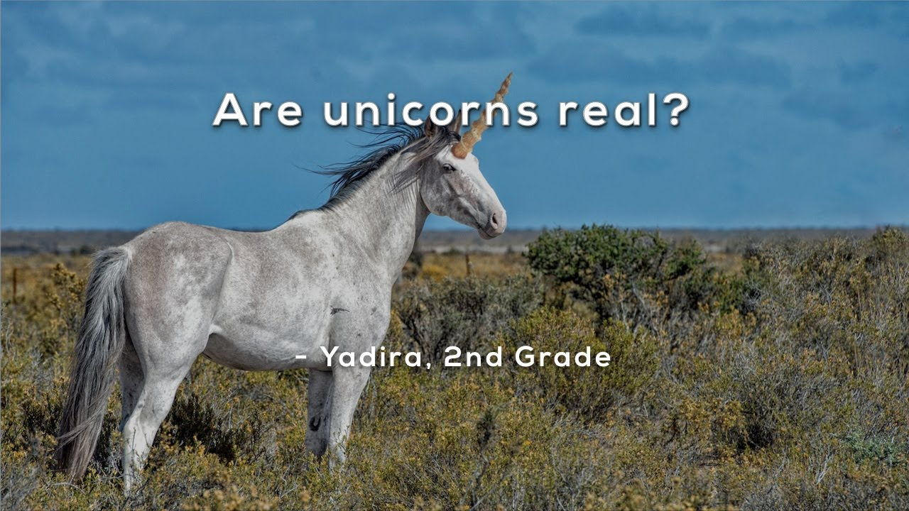 Are Unicorns Real Mystery Doug