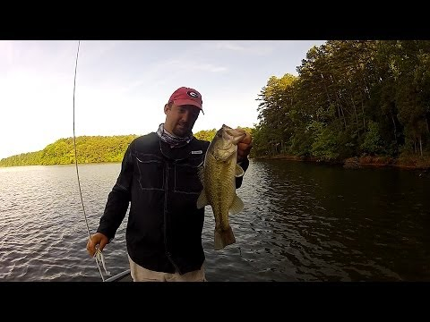 Basic spinnerbait bass fishing youtube for Youtube bass fishing