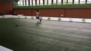 2016.3.23 パピヨン ♀Kuina とのドッグダンス.
