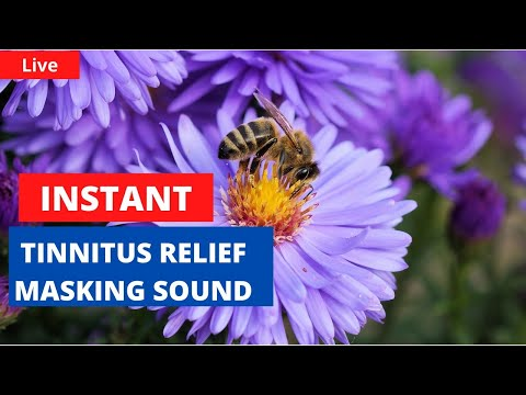 24x7-instant-tinnitus-relief-/-masking-bee-sound-from-nature-to-reduce-the-pulsating