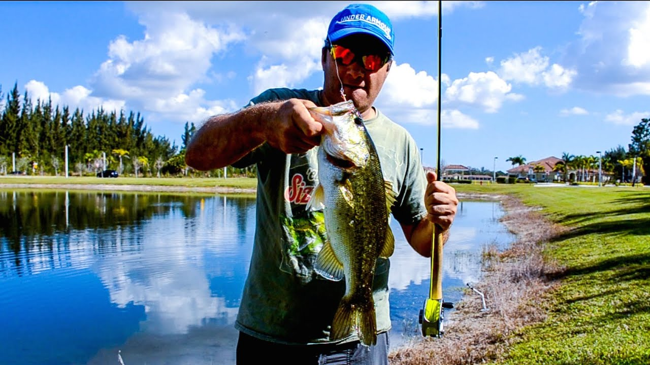 South florida fly fishing for bass my bigest bass with for South florida fishing