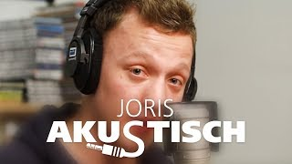 "Joris ""The Scientist"" (Unplugged Coldplay-Cover)"