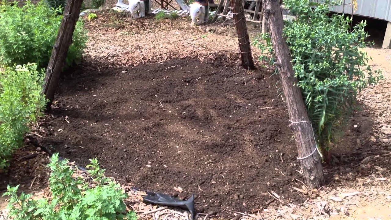clay soil advice youtube
