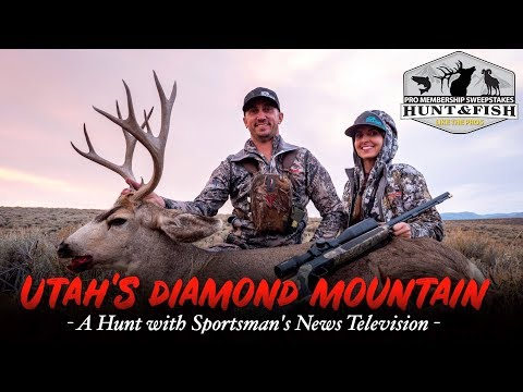 Utah's Diamond Mountain   A Hunt With Sportsman's News Television