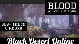 Black Desert Online [BDO] 600mil in 6 Hours at New Blood Wolves