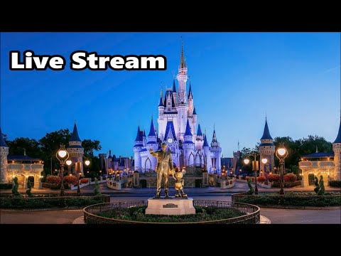 magic kingdom  stream    walt disney world