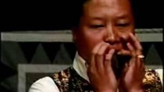 Playing the Leaf - Tshuab Nplooj