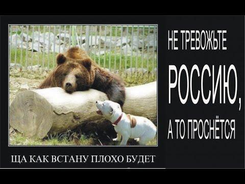 Прикольные демотиваторы с котэ и др.!!!