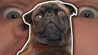 Pewdipie Quits Youtube, Edgar Takes Over.