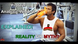 Anabolic Protein Window | After Workout Protein Time And Muscle Gain Explained[Hindi] | ZERO TO FIT