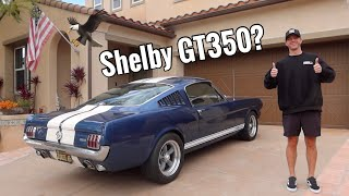 Buying a 1965 Ford Mustang Fastback!- Mint Condition!