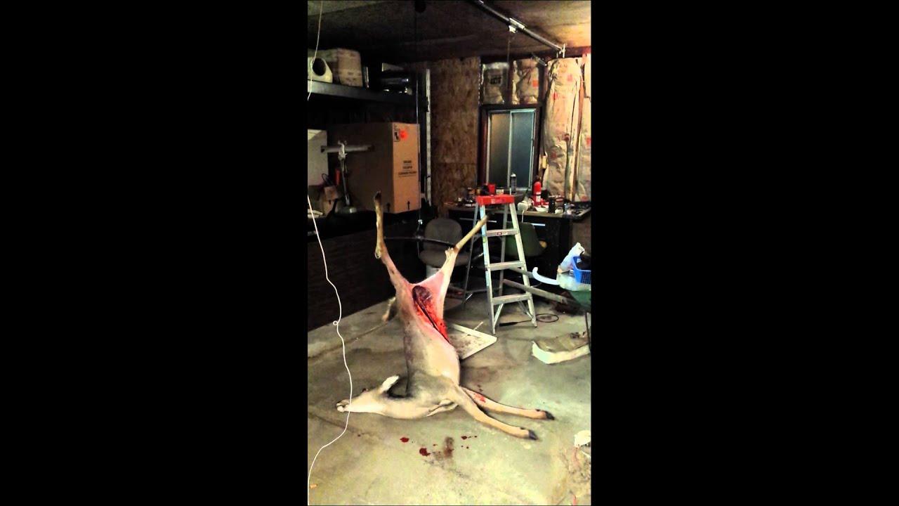 Homemade deer hoist  YouTube