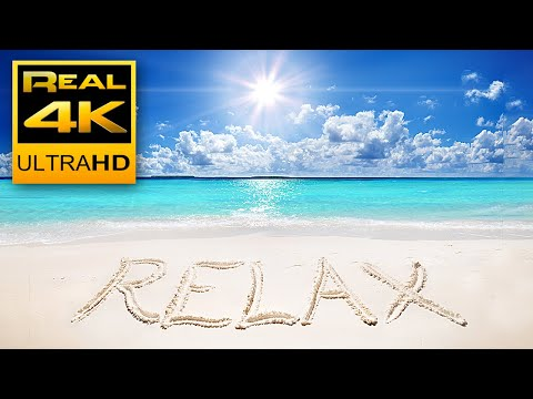 4K Relaxing & Satisfying Ocean Beach Waves and Birds Sounds 🌊 Yoga Sleep Relax Meditation - 2 hours