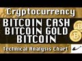 Bitcoin Cash, Bitcoin Gold, Bitcoin - Update CryptoCurrency Technical Analysis Chart