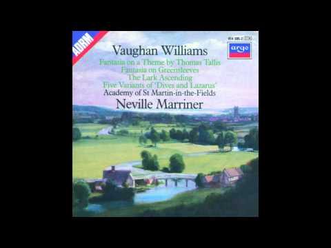 Vaughan Williams - The Lark Ascending