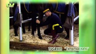 Royal Canadian Mounted Police - The Mounties -  Musical Ride #02