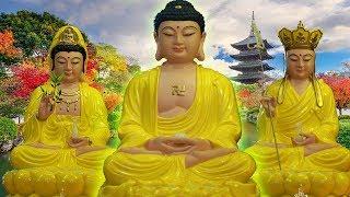 Nghe Kinh Phật này gieo nhân Phúc Đức cho con cháu Gia Đình may mắn ✅