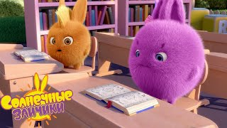 Время учиться - Солнечные зайчики | Сборник мультфильмов для детей