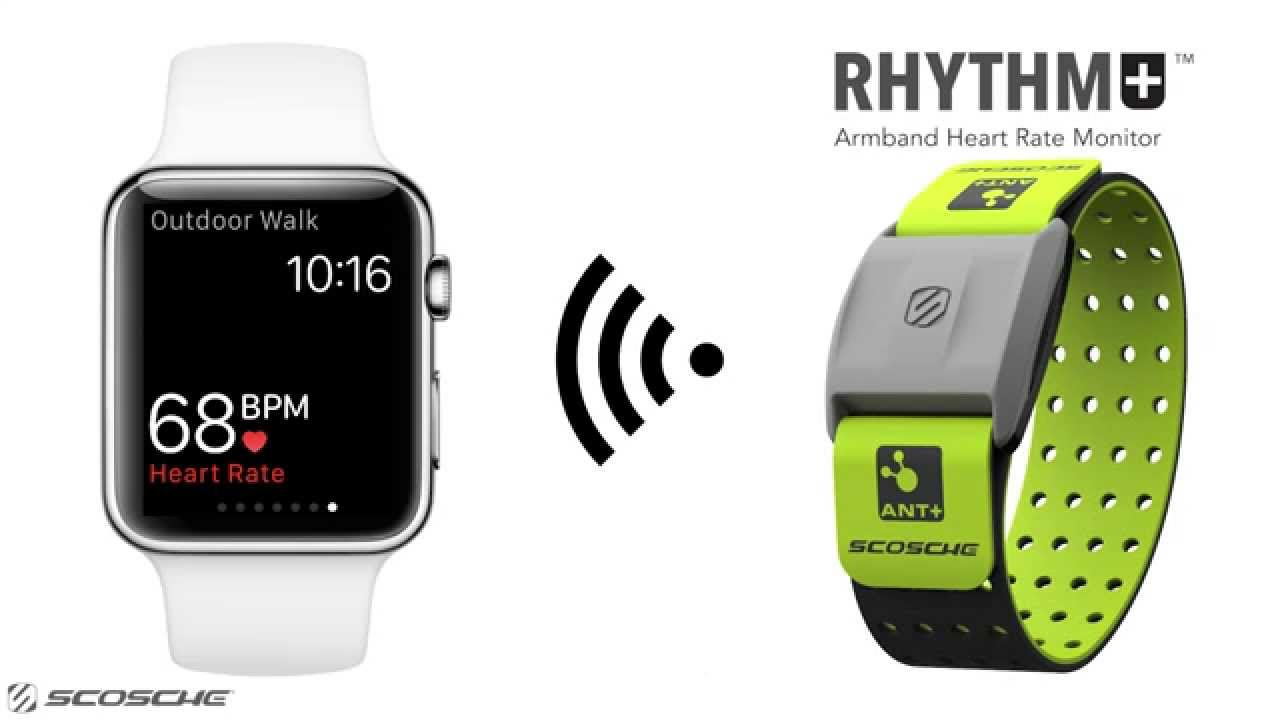 How To Connect Apple Watch to The Scosche Rhythm+ For More Accurate and  Reliable Heart Rate Readings