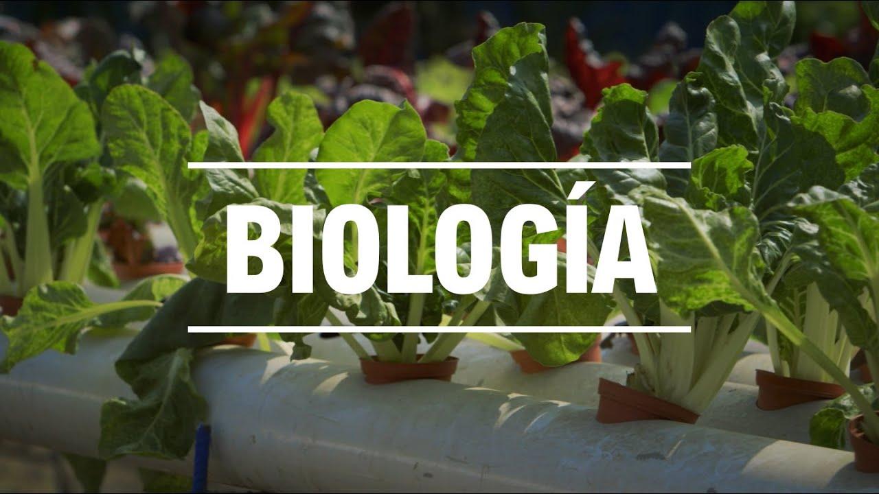 Estudia Biología en la UNALM - YouTube