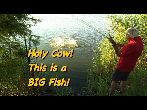 This Might Be Best Big Bass Lake In The World!