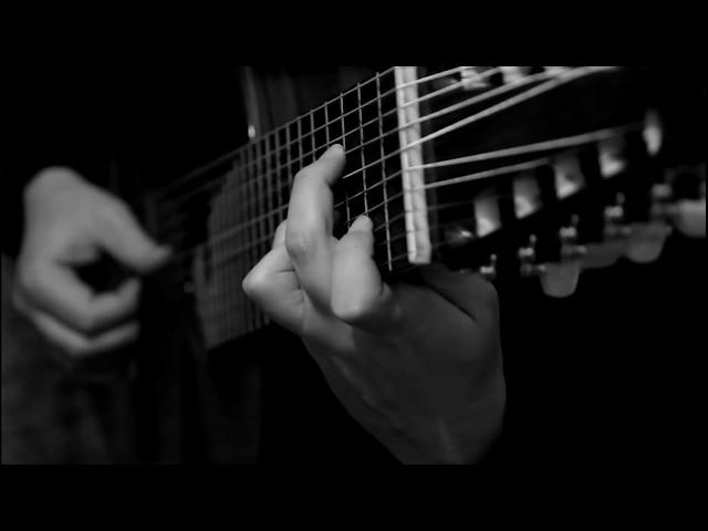 Viktor van Niekerk | Si dolce èl tormento (Claudio Monteverdi) | 10-string guitar of Narciso Yepes