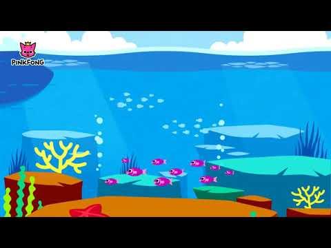 Lagu Baby Shark dalam Bahasa Indonesia | Lagu PinkFong