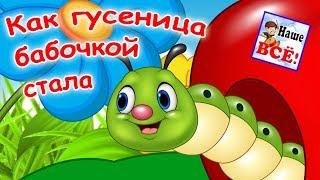 Как гусеница бабочкой стала! Мульт-песенка видео для детей. Наше всё!