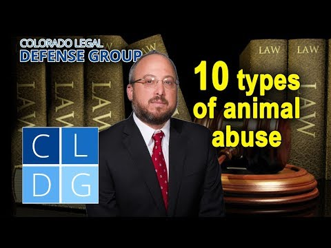 10 types of animal abuse that can land you in Jail in Colorado