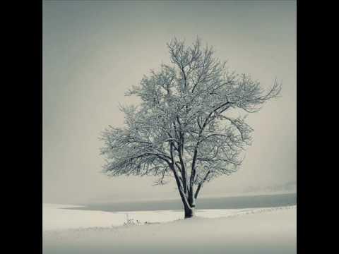 Frühlingstraum aus Schuberts Winterreise