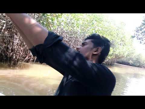 Pichavaram tourist place boating trip Tamil Nadu Chidambaram