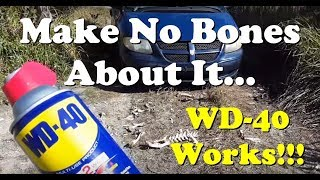WD 40 Headlight Cleaning Restoration Surrounded By Dead Bodies (V1488) WD 40 Hack Living In A Van