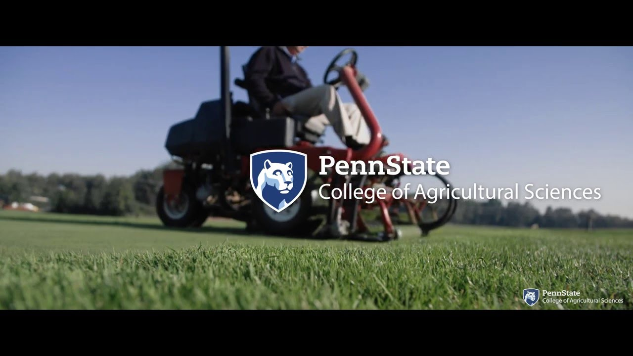 Penn states golf course turfgrass management program youtube penn states golf course turfgrass management program 1betcityfo Choice Image