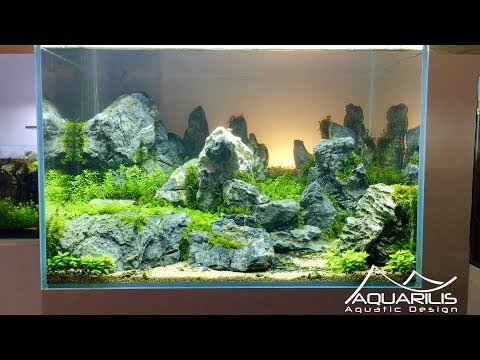 Aquascape 'Sunset' - Décor d'aquarium par Laurent Garcia, Aquarilis