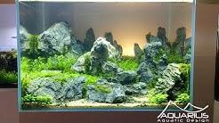 """Aquascape """"Sunset"""" - Décor d'aquarium par Laurent Garcia, Aquarilis"""
